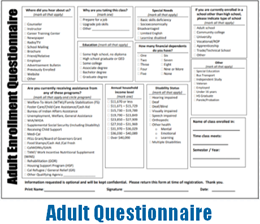 Adult Questionnaire